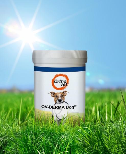 Derma Dog Pulver