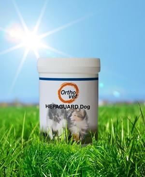 Hepaguard Dog 165g