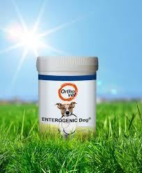Enterogenic Dog Pulver